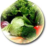 食物繊維の画像
