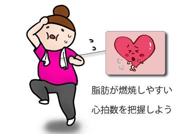 心拍数と脂肪燃焼の関係