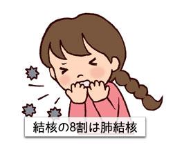 結核の8割は肺結核