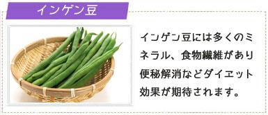 インゲン豆の画像