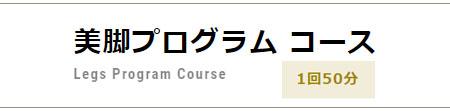 美脚プログラムコース