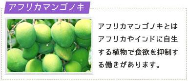 アフリカマンゴノキの画像