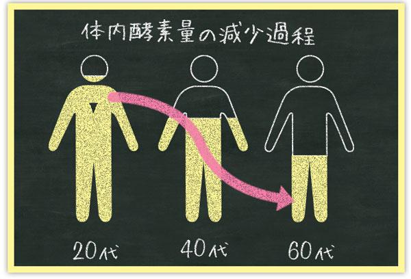 体内酵素量の減少グラフ
