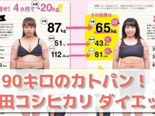 90キロのカトパン餅田コシヒカリのダイエット法